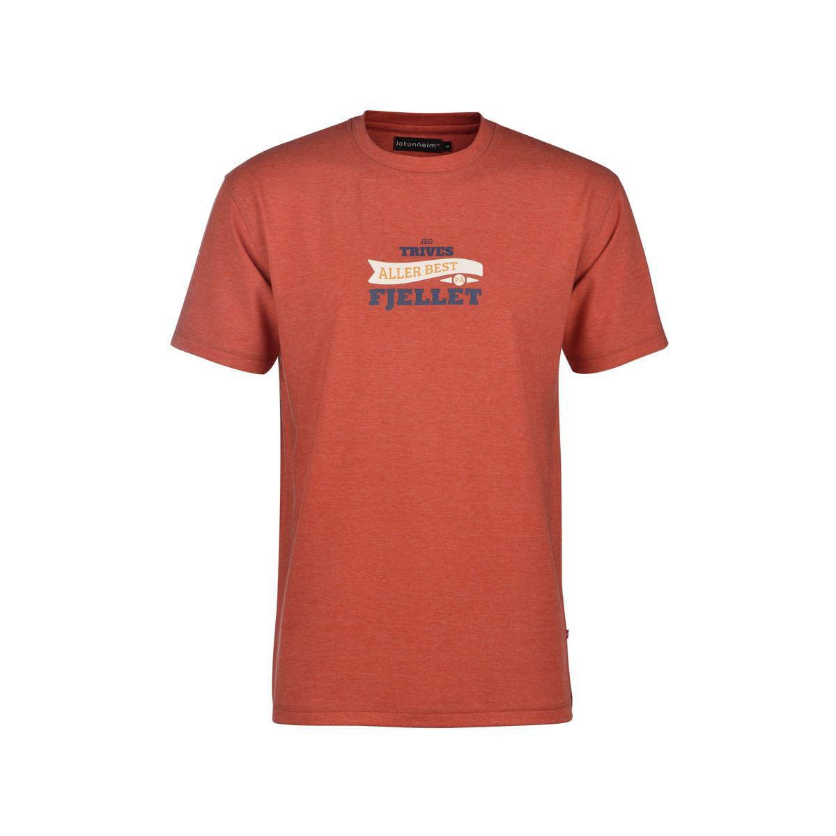 Bilde av Varde T-shirt m print