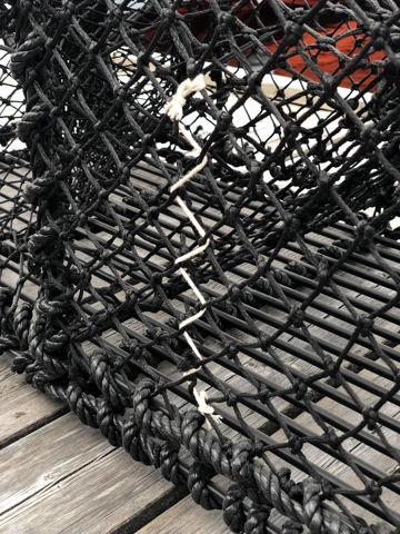 Bilde av Hummerteine 10 kg, flat topp